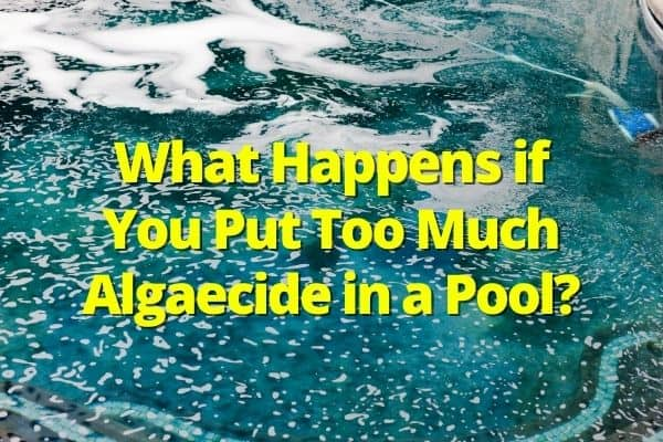 What Happens if You Put Too Much Algaecide in a Pool
